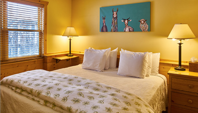 Alpine House Suite
